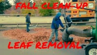 LEAF REMOVAL. FALL CLEAN-UP Ypsilanti