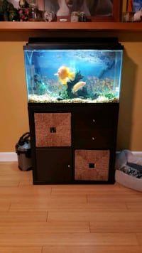 Fish Tank with filter and stand with no drawers Newburgh, 12550