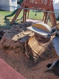 stump grinding  Services  Lodi