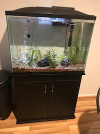 29 gallon high with stand includes gravel decoration light air needs a heater  Columbia, 21044