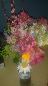 pink and white petaled flower arrangement Reno, 89501