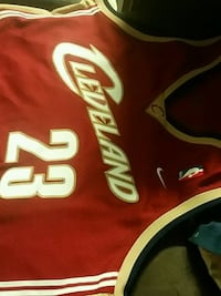 LeBron James 2XL clevland Winnipeg, R2C 4J7