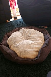 Pet Bed (dog or cat)