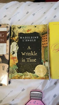 Book: A Wrinkle in Time 181 mi