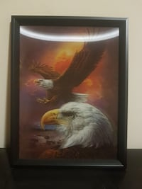 american bald eagle painting with black frame