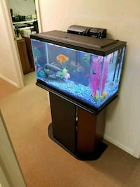 30 gallon fish tank with stand.  New Bloomfield, 17068