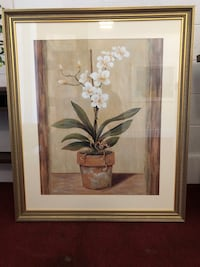 Framed Orchid Print Norfolk, 23518