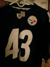 Troy polamalu. Steelers jersey   Front Royal, 22630
