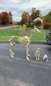 Halloween skeleton horse and 2 smaller Skelton's.   Warrenton, 20187