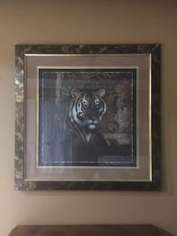 36 1/2 x 36 1/2 tiger picture with frame Lubbock, 79424