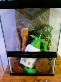 Crested gecko kit with cage