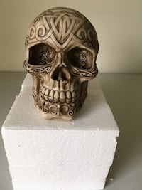 Decorative skull Hales Corners, 53130
