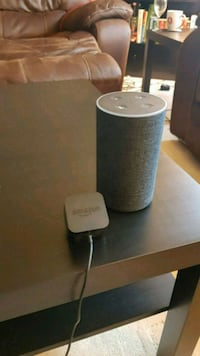Amazon Echo Plus Langley Township, V4W 3L3