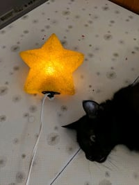 Light up rubberized star