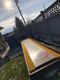 Shuffle board worth a lot more than asked 3491 km