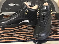 Jordan Retro 12 jump man Masters Rock Hill, 29730