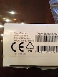Blackberry international travel charger