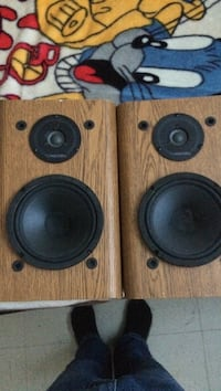 two black-and-brown speakers Odessa, K0H 2H0