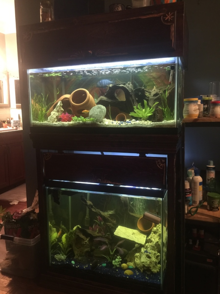 Double decker fish tank with custom stand in new orleans for Double fish tank stand