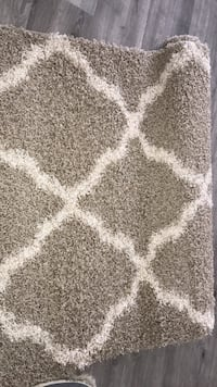 white and gray area rug Arlington, 22206