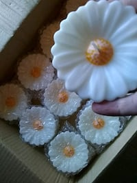 Floating Daisy Candles Ware Shoals, 29692