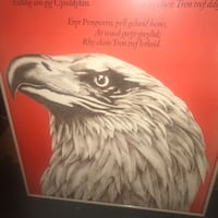 Professional Poster Frame Has an Eagle Head or you can add your own Poster Bridgeport, 06605