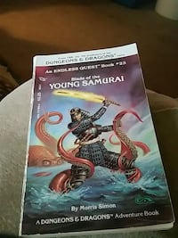 Dungeons and Dragons endless quest book .#23 387 mi