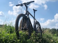 LiteSpeed Custom Build Titanium Toccoa  Mountain Bike - Top of the line components Reston, 20194
