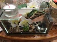 clear glass tank with white orchid Gatineau, J8V 3Y8