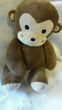 brown and white bear plush toy Los Angeles, 91411