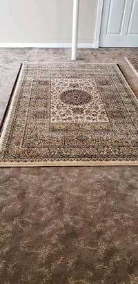 Main color is cream, brand new 5'by8' Persian style area rug  New Brighton, 55112