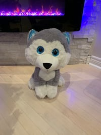 New Baby Wolf or Husky  Vaughan, L4H 1T6