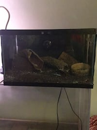 10 gallon Terrarium with heat lamp and evrything seen