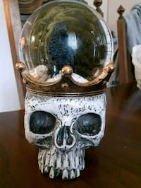 New solid skull waterball Chatham-Kent