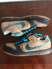 "Nike Dunk Low Pro SB ""Slam City Skates"" Men's Size 11.5/12 Arlington, 22204"