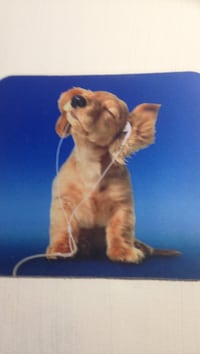 Cute puppy mousepad Arlington, 22206