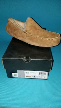 Ugg Brand Ascot Mens Shoe (new in box)