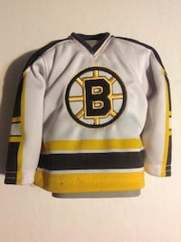 Boston Bruins Mini Jersey Display Rochester, 03867