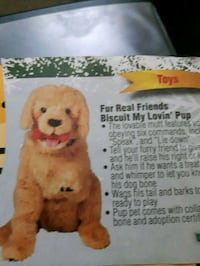 Furreal friends golden retriever( looking for this item ) Calgary, T2A 5W7