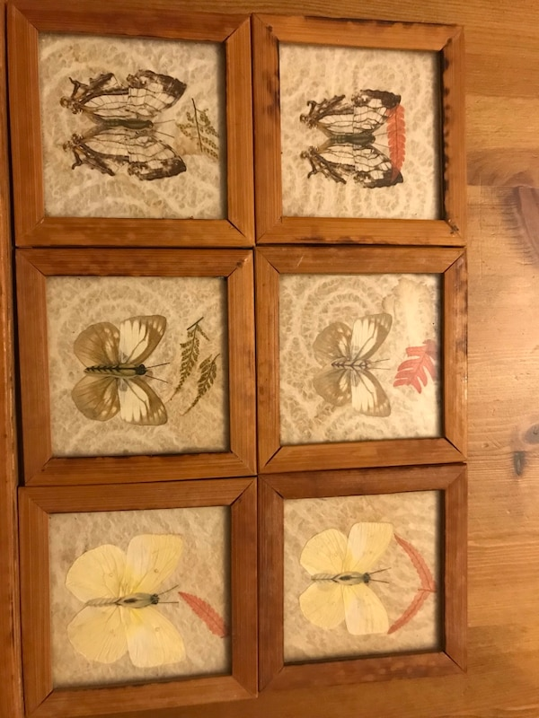 Vintage pressed butterfly tray and coaster set cd30bd94-2554-4ea4-af03-9d402a5cb34c