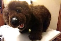 Brown grizzly bear Discovery Channel plush