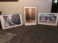Three painting with brushed gold aluminum frames  Cedar Rapids, 52402