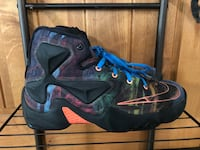 Nike Zoom Lebron James Multicolor 330 Young Boys Sneakers (Rare) Northfield, 55057
