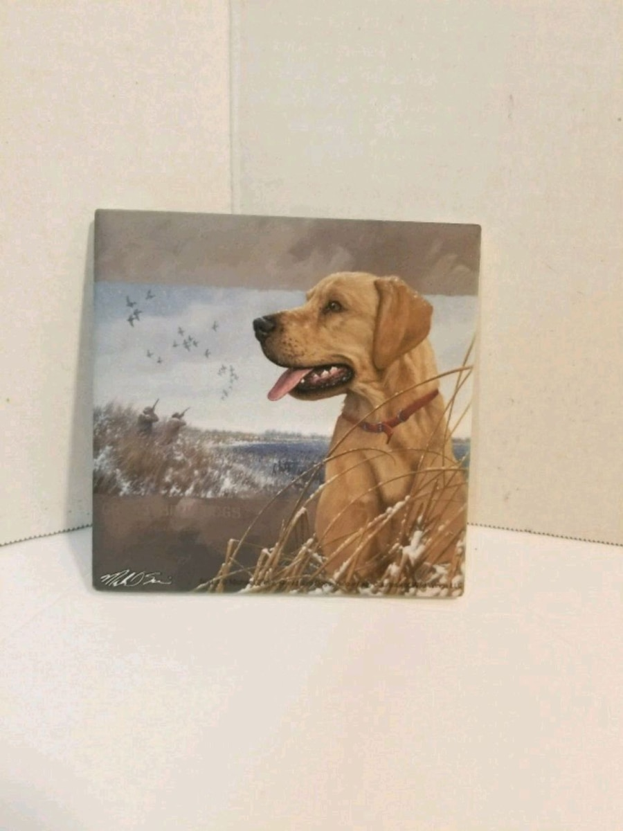 adult yellow Labrador retriever sits near body of water painting for sale  Haslet