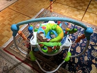 baby's white and green Fisher-Price jumperoo Toronto, M2R 3E9