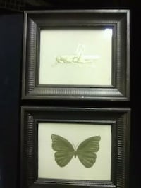 Two Pictures of Butterfly and Grasshopper  Fall River, 02724