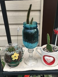 Cacti in Unique Planters $10.00 each or ALL THREE For $25.00 Hamilton, L8H 2T4