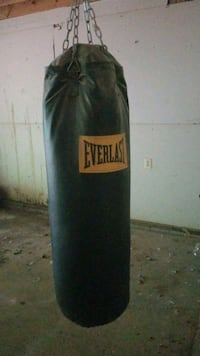 Everlast Punching Bag Warrenton, 20186