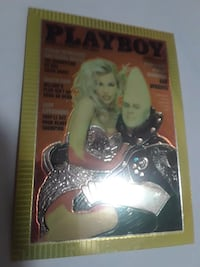Playboy poster with silver frame Bryan, 77801