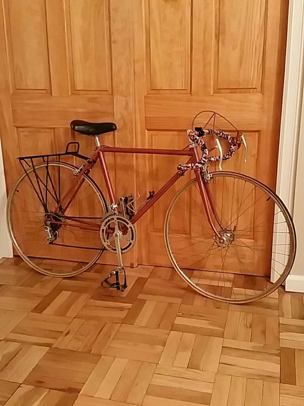 Bicycle (Francesco Cuevas custom frame)